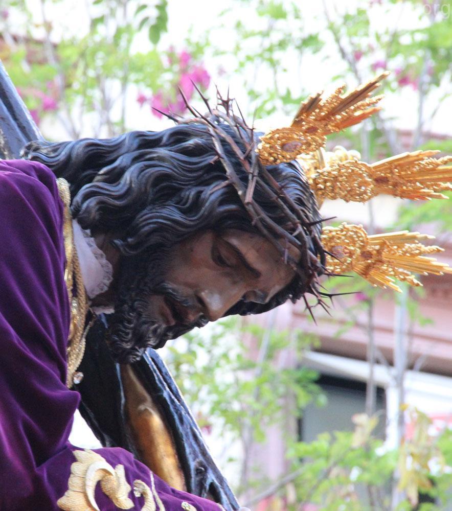 San Semana Hermandades Ramos De Sevilla Roque Domingo – Santa 6IgvyYfmb7
