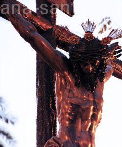 Solemne Quinario y Función Principal del Santísimo Cristo de la Sangre. San Benito